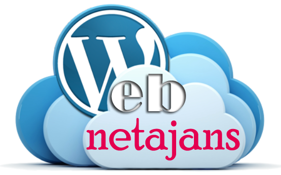 Web'de Net Çözümler Ajansı